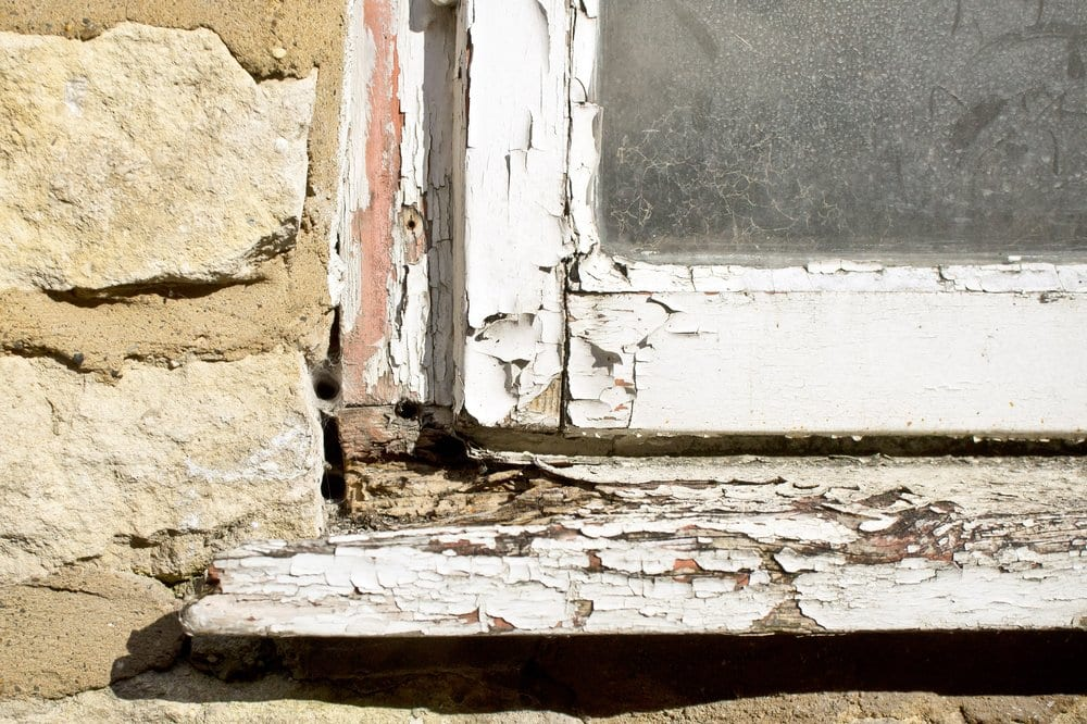 Risks and Warning Signs of Wood Rot in Your Home